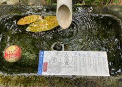 講演【水の如く生きる】 福井県敦賀市アロマルーム『IRODORIいろどり』