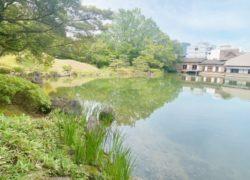 【光を観る旅in福井】敦賀市アロマルームIRODORIいろどり